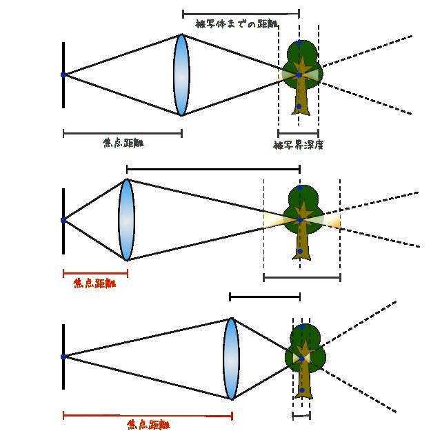 被写界深度と焦点距離の関係