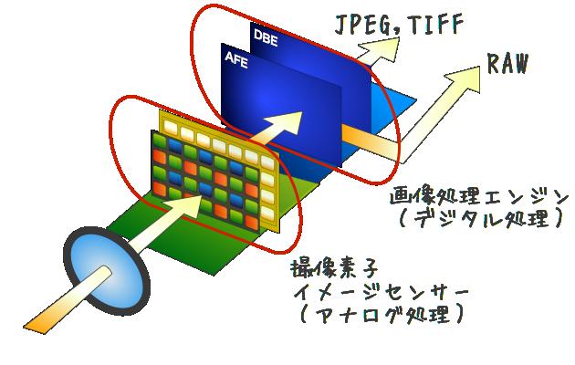 撮像素子と画像処理エンジンの関係