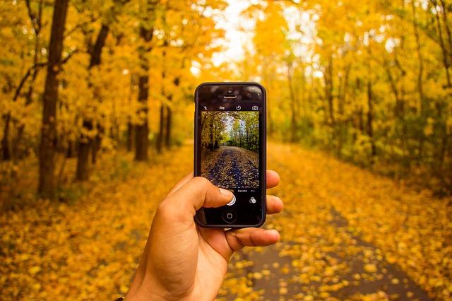 iphoneとデジカメ比較